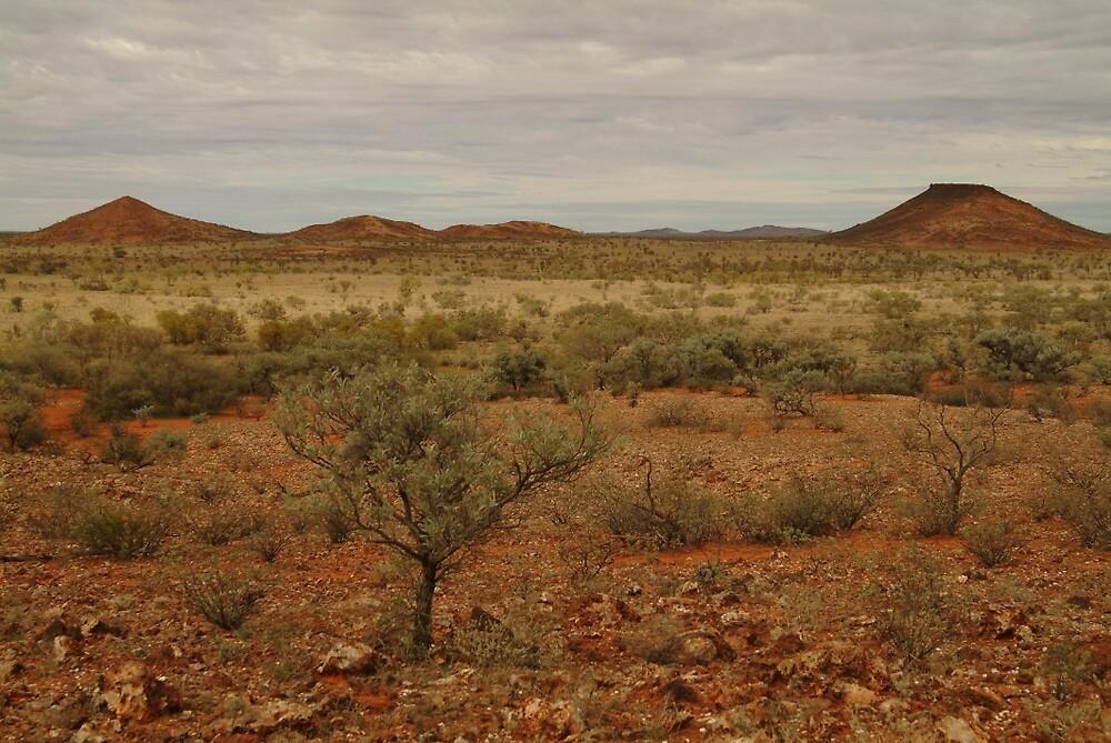 Joe Mortelliti Gallery - Mt Smith, Batton Hill, Simpson Desert, Northern Territory, Australia by thisisaustralia
