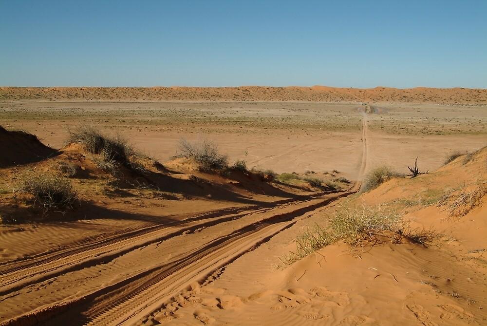 Joe Mortelliti Gallery - The QAA Line, Simpson Desert, Queensland, Australia. by thisisaustralia