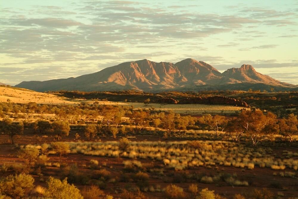 Joe Mortelliti Gallery - Dawn on Mt Sonder, West MacDonnell National Park, Northern Territory, Australia. by thisisaustralia
