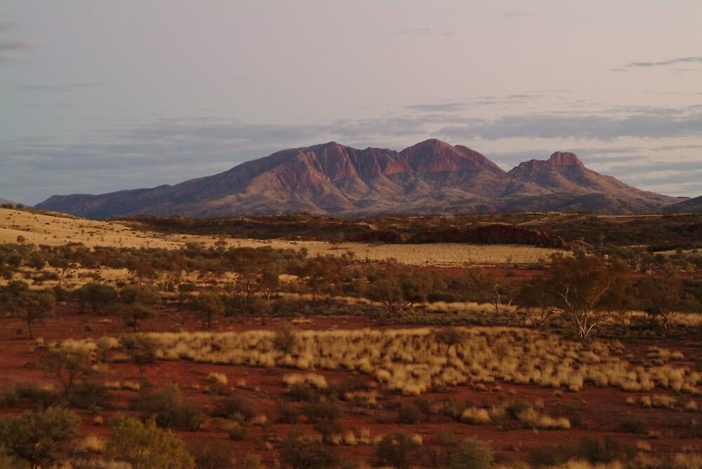 Joe Mortelliti Gallery - Purple tones, Mt Sonder, MacDonnell Ranges, Northern Territory, Australia.  by thisisaustralia