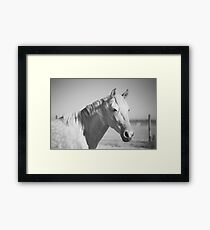 Savannah Framed Print