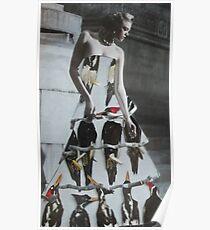 Bird Dress Poster