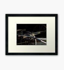 Buggy In Hiding Framed Print