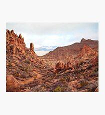 Grapevine Hills Trail Ascent Photographic Print