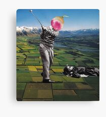 Back to the ground Canvas Print