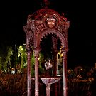 0895 Williamstown Drinking Fountain by DavidsArt