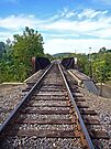 Rail Road Tracks into Town by FrankieCat