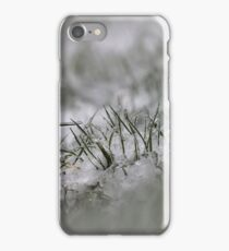 IceAge iPhone Case/Skin