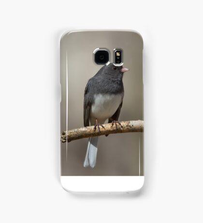 Dark-eyed Junco Samsung Galaxy Case/Skin