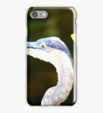 Florida Bird iPhone Case/Skin