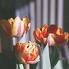 'Tulips' by Jon  Denby