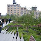 High Line View, New York's Elevated Garden and Walking Path by lenspiro
