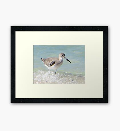 Dipping In Framed Print