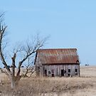Old Barn and Old Tree In Field by Deb Fedeler