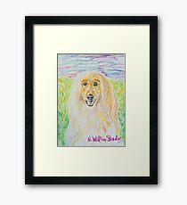 Blond Afghan Framed Print