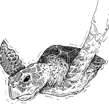 Sea Turtle by MichaelBlanton