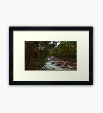 Mossman Gorge Daintree Rainforest North QLD Australia Framed Print
