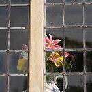 Vase & flowers, Dyrham Park by David Carton