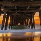 Under the boardwalk by Andrew Dickman
