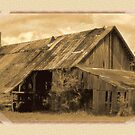 """""""Timeworn Photo Albums and Golden Days""""... prints and products by © Bob Hall"""