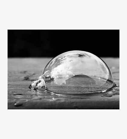 Life in a bubble Photographic Print