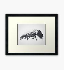 Pegasus (Black & White) Framed Print