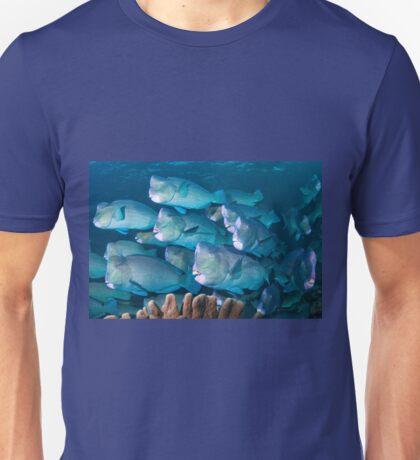 Bumphead Parrotfish, Sipadan, Sabah, Malaysia T-Shirt