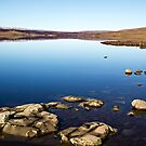 Cow Green Reservoir by David Lewins