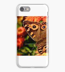 Meadow Argus Butterfly iPhone Case/Skin