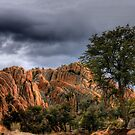 Storm Over the Dells by Wayne King