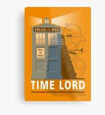 Time lord Metal Print