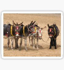 British Beach Donkeys Sticker