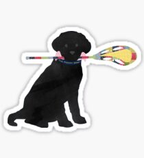 Black Lab Retriever Lacrosse Dog Sticker