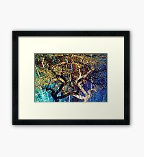 The mysterious face of nature Framed Print