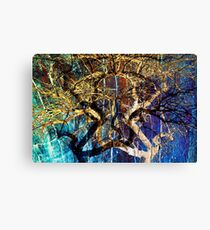The mysterious face of nature Canvas Print