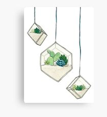 Hanging Succulents One Canvas Print