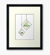 Hanging Succulents Two Framed Print