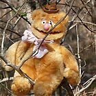 Does A Bear Joke In The Woods? by Stacey Lazarus