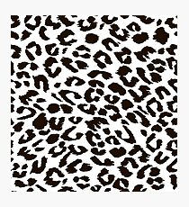 Black and white leopard Photographic Print
