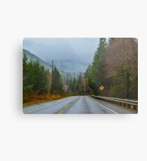 Burnt Mountain Road, Clallam County, Washington Metal Print
