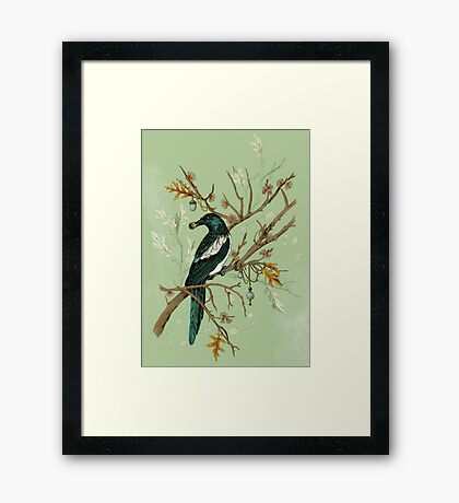 Magpie Birds Framed Print
