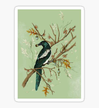 Magpie Birds Sticker