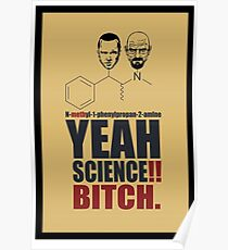 Yeah Science: Posters | Redbubble