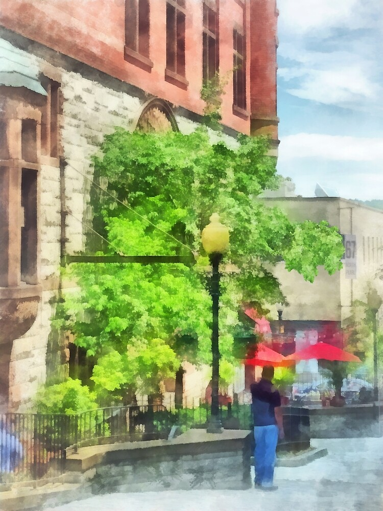 Albany, NY - North Pearl Street by Susan Savad