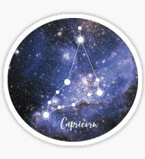 Capricorn Zodiac Sign, December 22 - January 19 Sticker