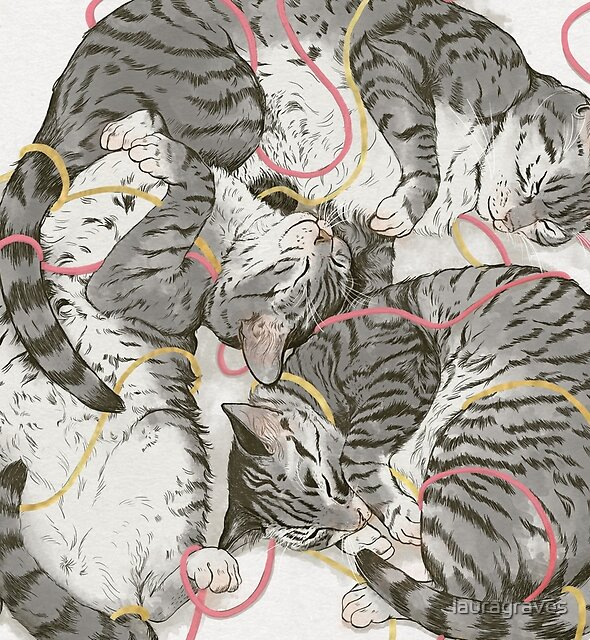 cats /rose and gold by lauragraves