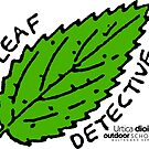 Stinging Nettle - Leaf Detective by Multnomah ESD Outdoor School