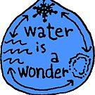 Water is a Wonder by Multnomah ESD Outdoor School