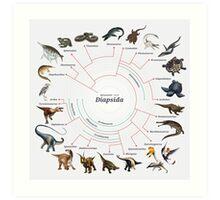 Diapsida: The Cladogram Art Print