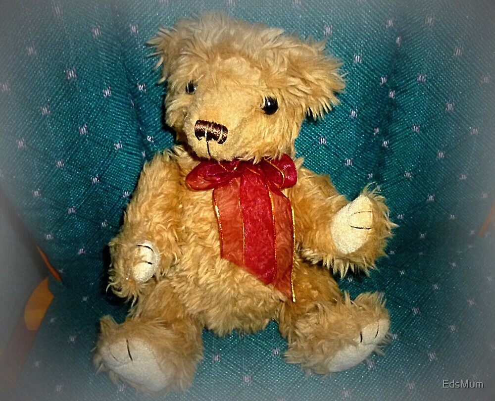 Much loved Teddy from Op-Shop by EdsMum
